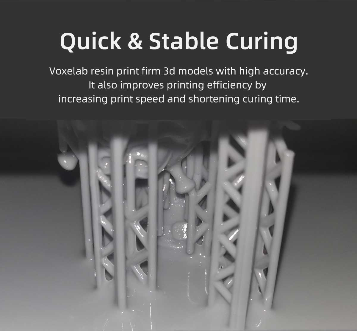 quick & stable curing resin | Voxelab
